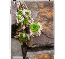Green & Pleasant iPad Case/Skin