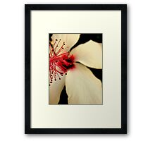 Whimsy. Framed Print