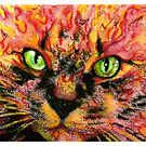 Sebastian: Fire Cat by Maggie Keegan