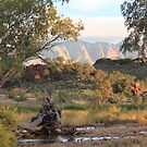 Mount Sonder and Finke River by Cheryl Parkes
