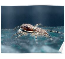 ©NS Spider In Blue Paintography IA. Poster