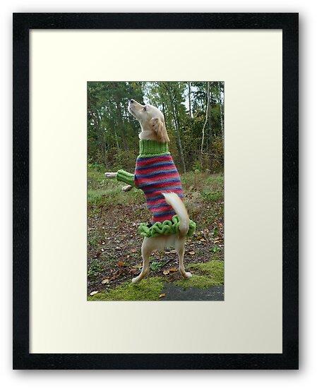 The ballerina by KanaShow