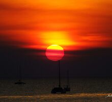 Darwin Sunset by Julia Harwood