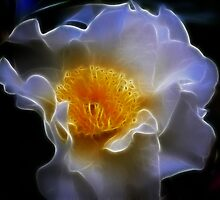 Fractalicious Camellia by TPOO