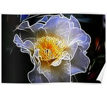 Fractalicious Camellia Poster