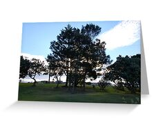 Trees at Dusk Greeting Card