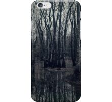 Winter Swamp iPhone Case/Skin