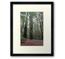 This is Big. Framed Print