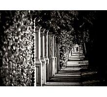 Uncommon Perspective  Photographic Print