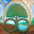 Permaculture by symbioeco