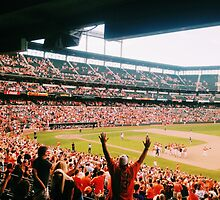 this is birdland by cmbuerg43