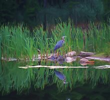 Blue Heron Reflections by SmilinEyes