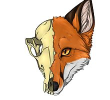 Fox Skull by TashaDawn