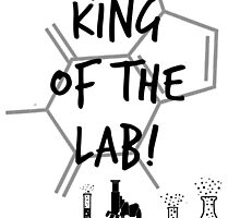 King of the Lab! 3  by kasia793