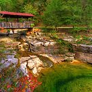 Nestled Bridge, Ponca Arkansas by Gregory Ballos | gregoryballosphoto.com