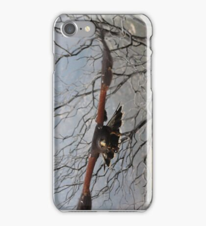 Harris Hawk 6 iPhone Case/Skin