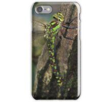 Aeshna cyanea iPhone Case/Skin