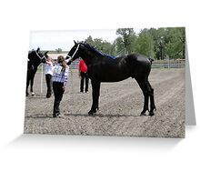 Magnificent Percheron Greeting Card