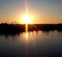 Sunset on the Zambezi by Braedene