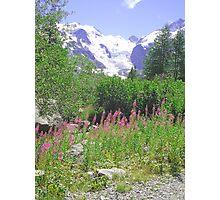Morteratsch Glacier Trail Pontresina Switzerland Photographic Print