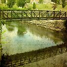 Walking Bridge in Jewett City, CT... USA by Debbie Robbins