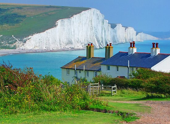 Spot The Seagull - The Seven Sisters by Colin J Williams Photography