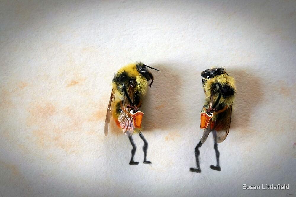 Begrudge by Susan Littlefield