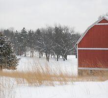 Winter Barn by Buttershug2