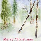 Winter Wonderland by Diane Hall