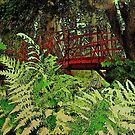 Ferns by the Red Bridge  by Rick  Todaro