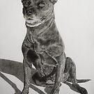 Old American Staffordshire Terrier Mix by Istvan Natart