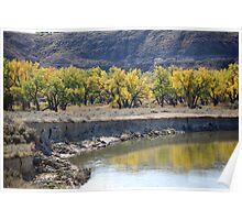 Falling River Poster
