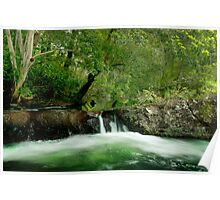 Wallaby Creek, Little falls, Home rule, FNQ Poster