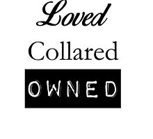 Loved, Collared, Owned. by luulink