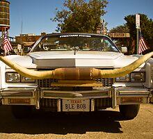 Car Horns by jscherr