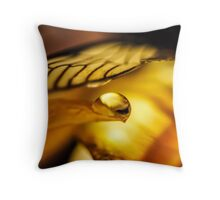 Will You Still Know Me Throw Pillow