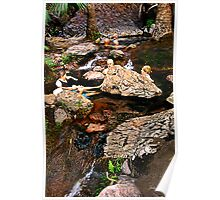 Zebadee Springs, El Questro, Western Australia Poster