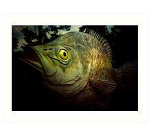 Crappie - Reelfoot Lake, Tennessee Art Print