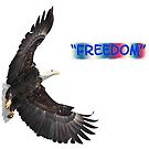 Freedom by Thomas Young