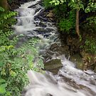 Socialville-Foster Road Waterfall by Kenneth Keifer