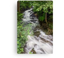 Socialville-Foster Road Waterfall Canvas Print