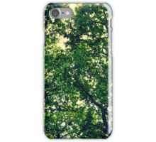 In The Woods Light Through leaves iPhone Case/Skin