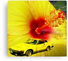 Pretty in Yellow.......... Canvas Print