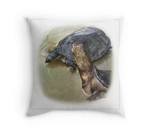 SENEGAL FLAPSHELL TURTLE Cyclanorbis senegalensis FINAL ART(NOT A PHOTOGRAPH OR PHOTOMANIPULATION) Throw Pillow
