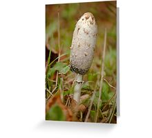 Shaggy Ink Cap Fungus Greeting Card