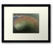 Dawn Out the East Window Stage 1 Framed Print
