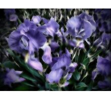Abstract flowers. Photographic Print