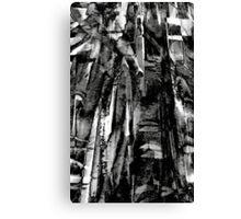 black bamboo... Canvas Print