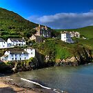 Port Isaac Harbour view by David Wilkins