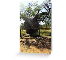 Boab Prison Tree, Derby, Western Australia Greeting Card